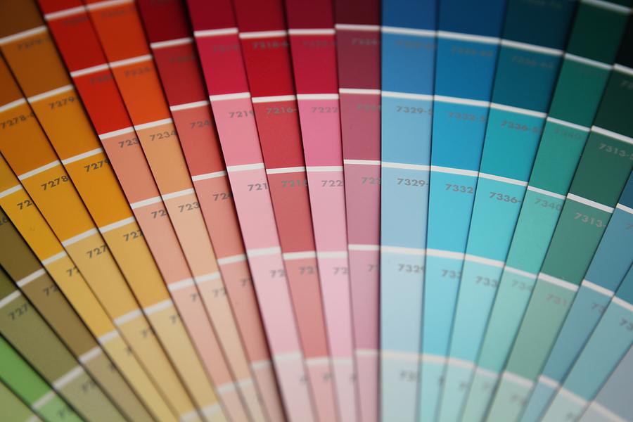 Cara Menentukan Color Palette Pada Website